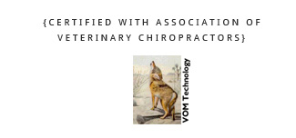 Veterinary Chiropractors