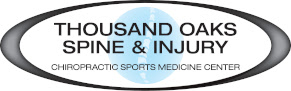 Chiropractic Care for Canines!